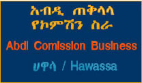 Hawassa Commission works
