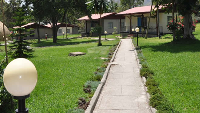Wondogenet Forestry College Hawassa